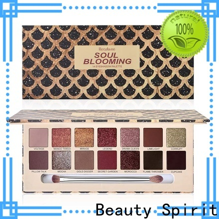 Beauty Spirit factory direct most popular makeup palettes natural looking fast delivery