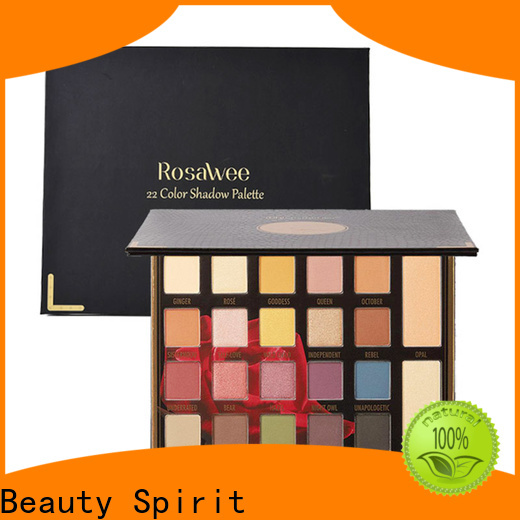 Beauty Spirit wholesale eyeshadow long-lasting fast delivery