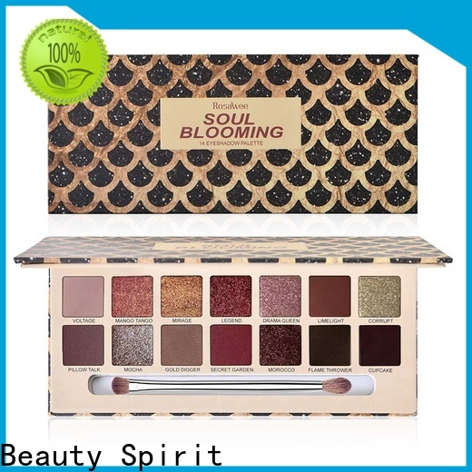 Beauty Spirit best pigmented eyeshadow palettes long-lasting fast delivery