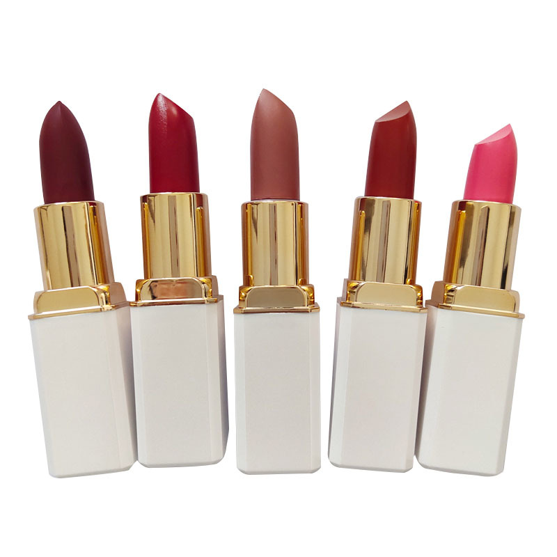 Top brand Quality Waterproof Long Lasting OEM Lipstick LP903