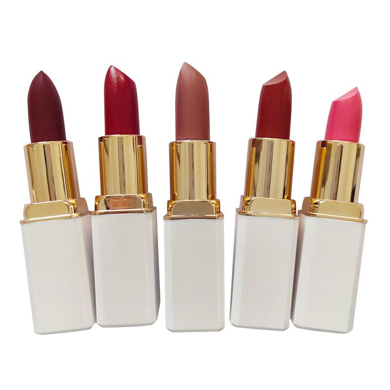 Top brand Quality Waterproof Long Lasting OEM Lipstick LP903